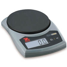 Hand Held Scales